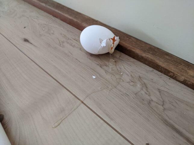 卵が転げ落ちて割れてしまった